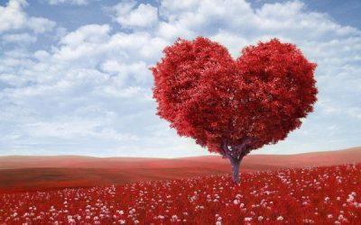 Acerca del amor romántico y otras malas costumbres